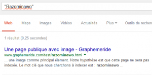 URL shared with a Public Post on G+ are indexed (via @elokenz)